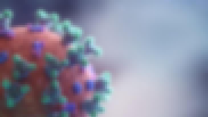 Représentation microscopique du virus Covid 19