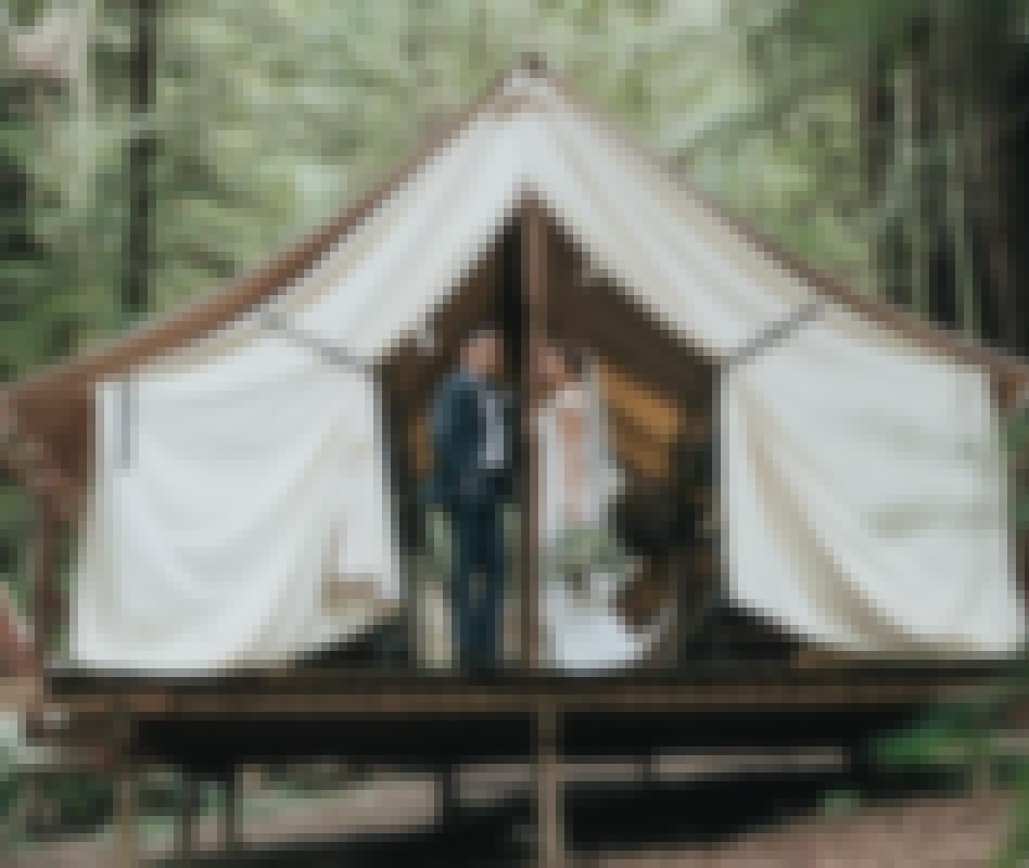 Photo d'un couple prise le jour de leur mariage organisé sur le thème de l'écologie, avec en arrière plan une cabane en bois écologique